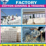 Salma Cotton Factory