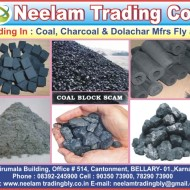 Neelam Trading Co
