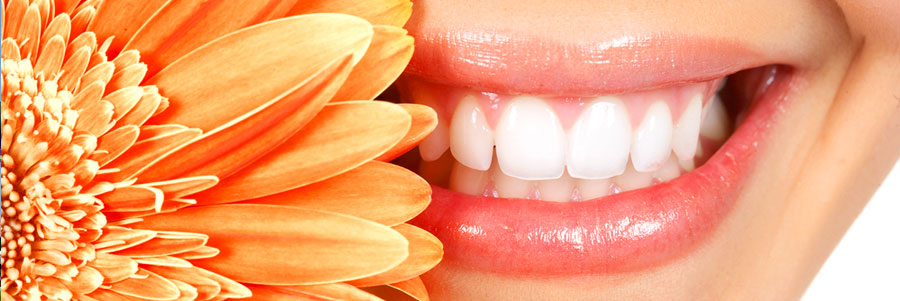 Shree Multispeciality Dental Clinic & Implant Centre