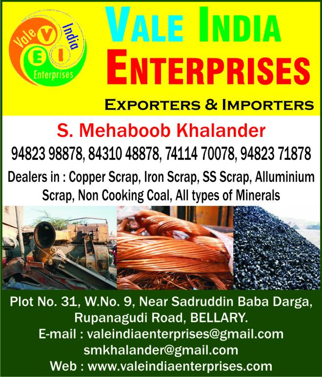 Vale India Enterprises