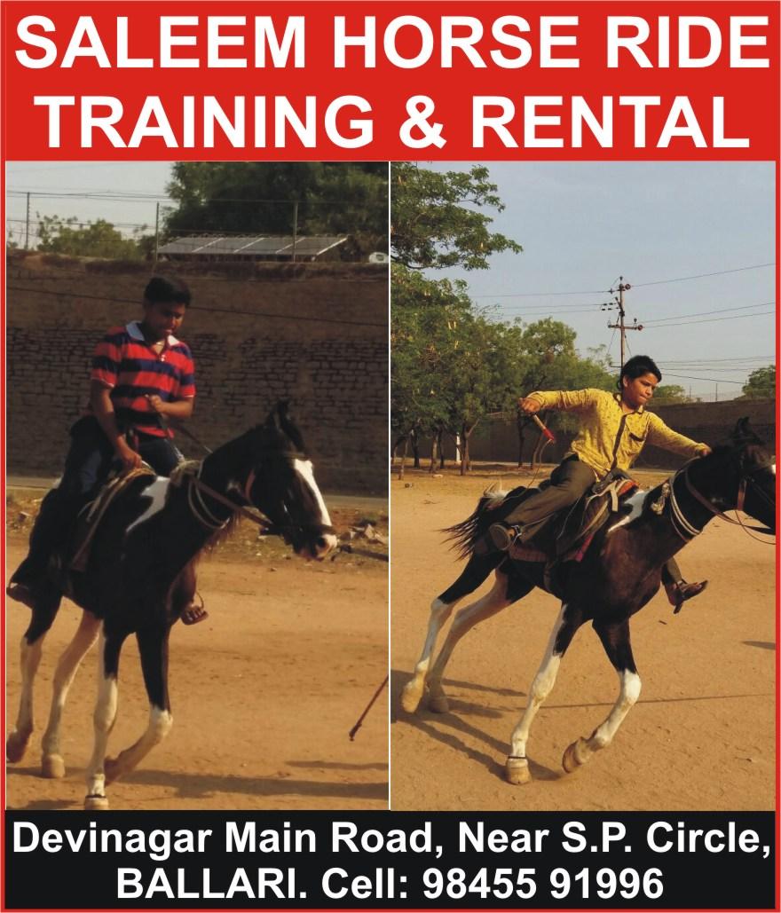 SALEEM HORSE RIDE TRAINING & RENTAL