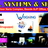 S.G. SYSTEMS & SERVICES