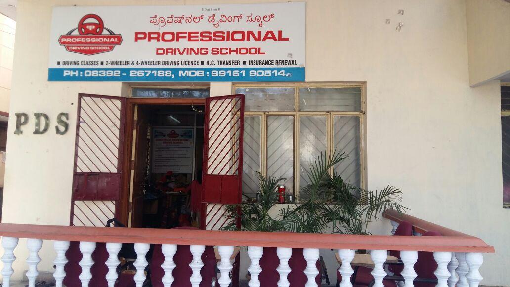 PROFESSIONAL DRIVING SCHOOL