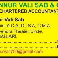 HONNUR VALI SAB & CO.,