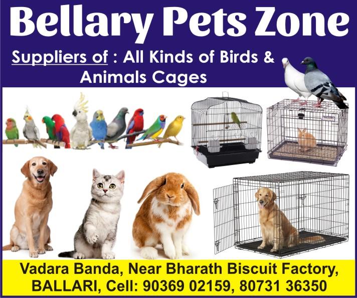 Bellary Pets Zone The Telit Yellow Pages Ballari